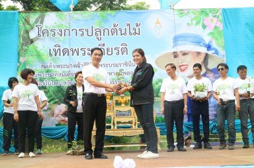 โครงการปลูกต้นไม้เทิดพระเกียรติสมเด็จพระนางเจ้าสิริกิติ์ฯ พระบรมราชินีนาถ วันแม่แห่งชาติ ปี 2560